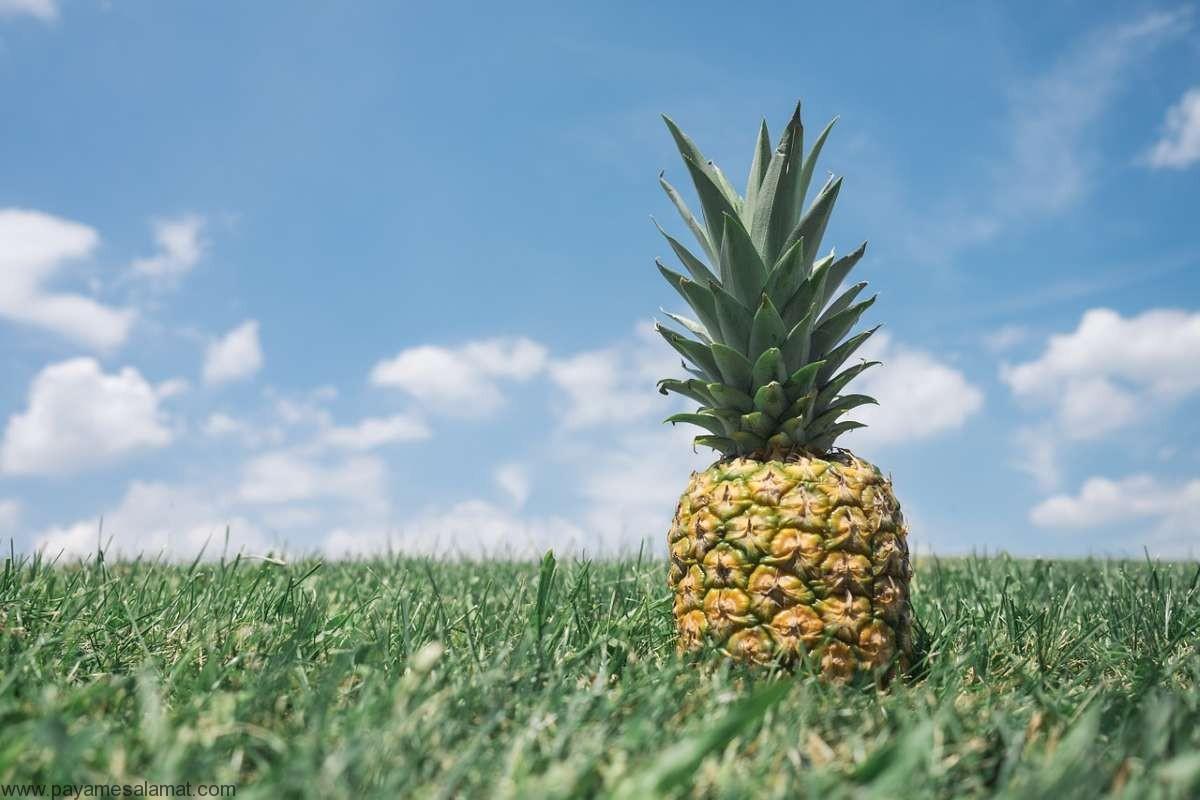آیا آناناس قند خون را پایین می آورد؟