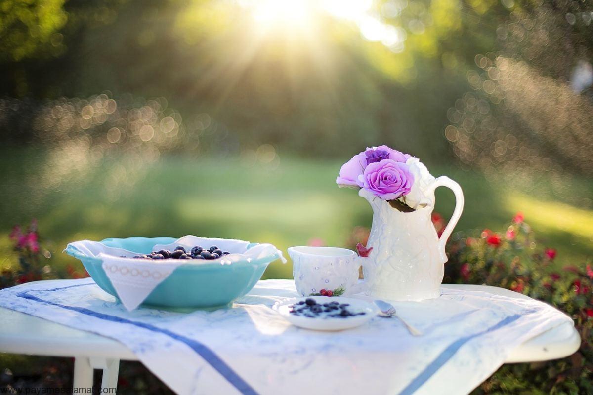 پیشنهاد چند غذای بسیار کم فیبر برای صبحانه