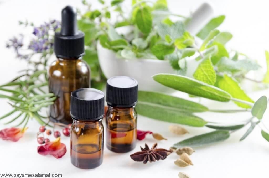 ۱۰ نمونه از مهمترین گیاهان آرام کننده عضلات
