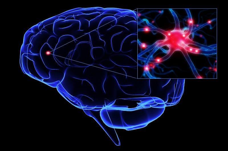 سیفلیس عصبی (نوروسیفیلیس) ؛ علل و عوامل خطر، انواع، روش های تشخیص و درمان