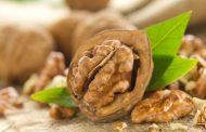 مزایا و خطرات مصرف اسیدهای چرب امگا ۶ به همراه منابع تامین کننده این ماده
