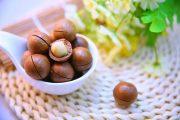 خواص امگا ۹ برای قلب و مغز و مهمترین منابع تامین این اسید چرب برای بدن