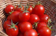 خواص و ارزش غذایی گوجه فرنگی و توانایی این ماده برای مبارزه با التهاب و سرطان