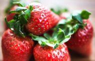 ۲۰ نمونه از بهترین مواد غذایی سرشار از ویتامین C