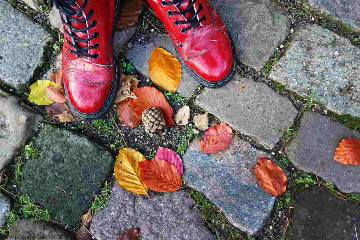 خطرات پوشیدن کفش بیرون در خانه و وارد شدن با کفش به خانه