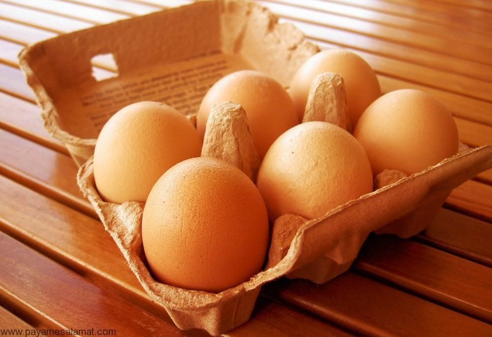 کاربرد پوست تخم مرغ برای ارتقاء سلامت بدن، بارور کردن گیاهان و افزایش خلاقیت کودکان