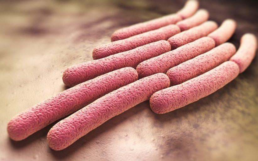 شیگلوزیس ؛ علل، روش های درمان، عوارض و روش های پیشگیری از این بیماری