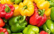 خواص فلفل دلمه ای برای کاهش وزن و مبارزه با بیماری های جدی به همراه ارزش غذایی این ماده