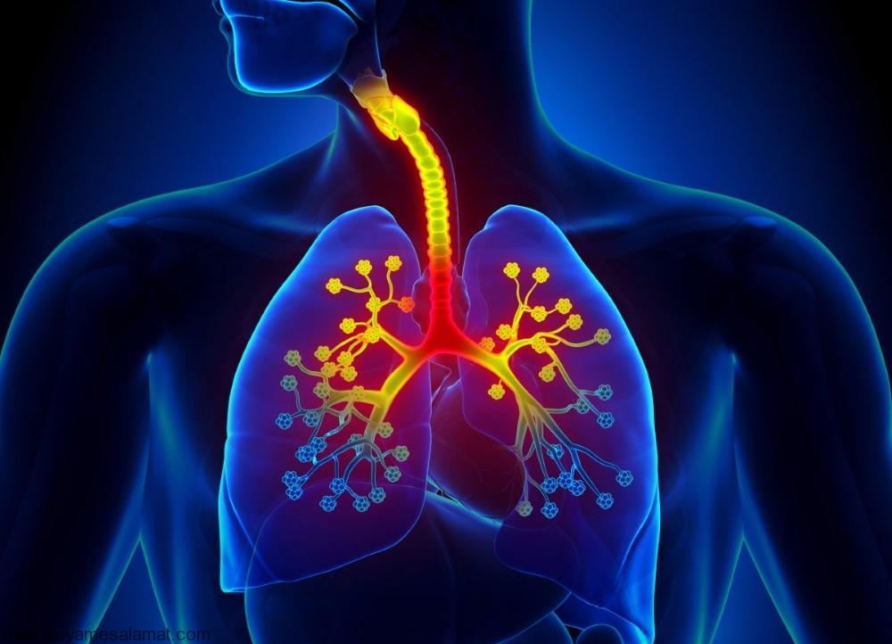 برونشیت ؛ نشانه ها، علل، عوامل خطر، عوارض، روش های تشخیص و درمان