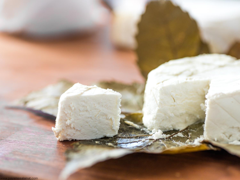 خواص و ارزش غذایی پنیر بز