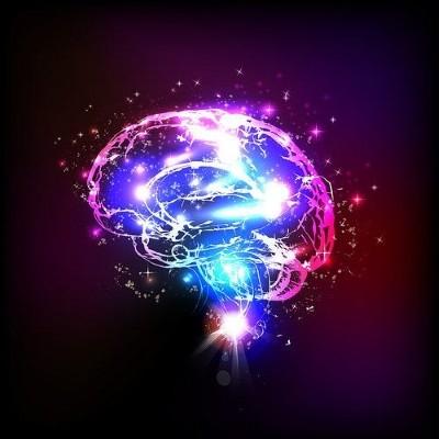 مزایای ورزش کردن برای مغز