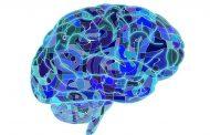 هیپوکسی مغزی ؛ انواع، علل، علائم، عوامل خطر، عوارض و روش های درمان