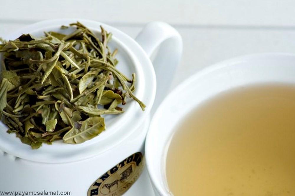 چای سفید ؛ خواص آن برای بدن و مقایسه آن با چای سبز و سیاه
