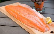 کالری فیله ماهی سالمون چقدر است و چه غذاهایی را می توان با این ماهی پخت؟