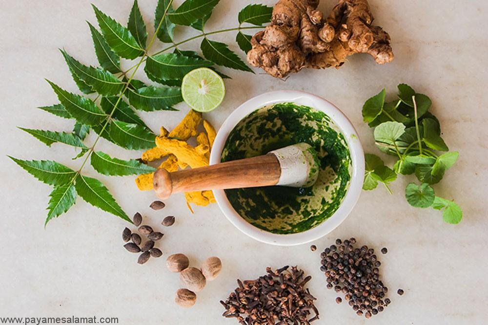 ۱۰ نمونه از بهترین گیاهانی که سلامت بدن را بهبود می بخشند