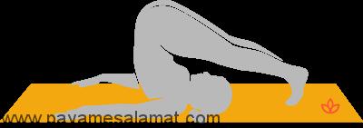 تمرینات یوگا برای تقویت سیستم ایمنی بدن