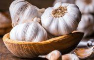تحقیقات انجام شده بر روی کاهش خطر ابتلا به سرطان ریه با سیر
