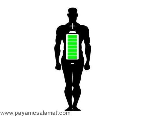 مزایای استفاده از مواد غذایی تخمیر شده و پروبیوتیک