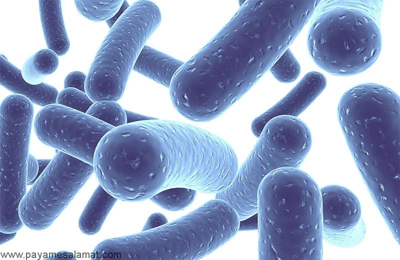 آیا می توانیم از پروبیوتیک برای درمان رفلاکس اسید استفاده کنیم؟
