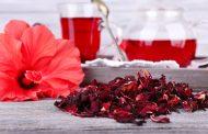 خواص چای گل بامیه برای بدن و روش تهیه این چای