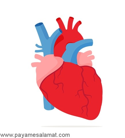 ناهنجاری تنه مشترک شریانی