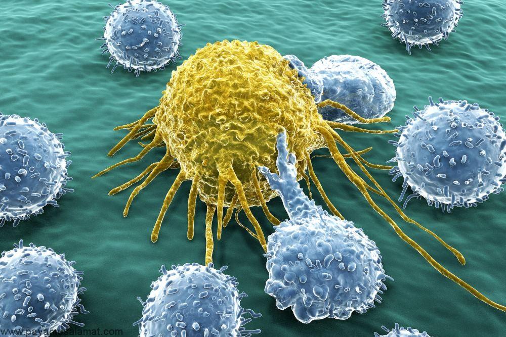 ۶ نکته مهم درباره ایمونوتراپی سرطان