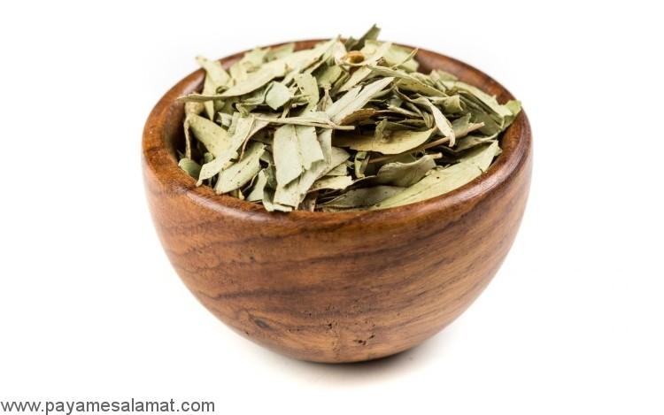 خواص چای سنا برای بدن
