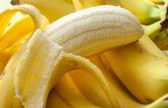 آشنایی با مواد غذایی پری بیوتیک