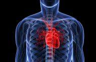 ۶ راه طبیعی برای درمان کاردیومیوپاتی به همراه آشنایی با این بیماری
