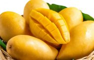 خواص انبه بر اساس یافته های علمی و ارزش غذایی این میوه