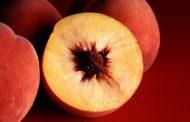 معرفی میوه های کم قند مناسب برای افراد دیابتی