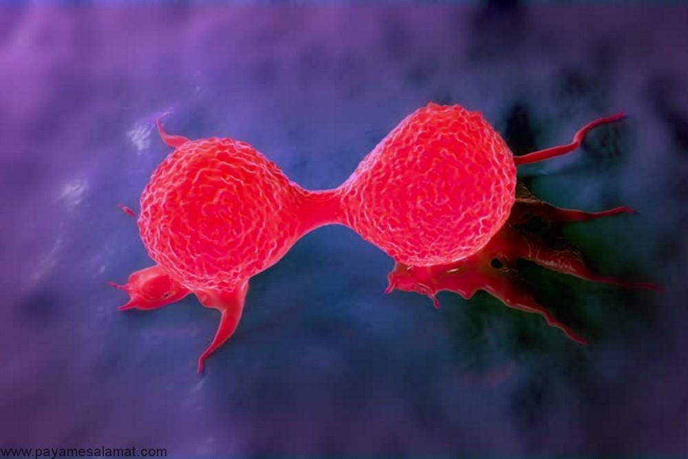 آشنایی با روش های درمان سرطان تهاجمی پستان