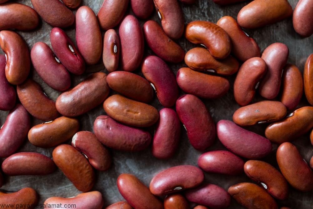 آشنایی با سالمترین حبوبات غنی از پروتئین