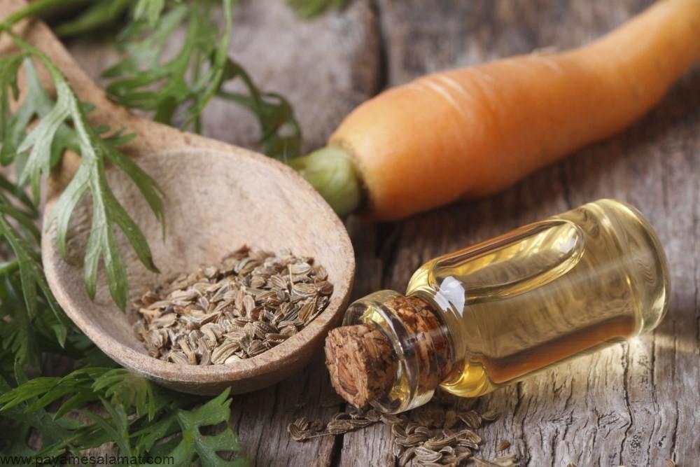 خواص روغن بذر هویج برای پوست و مو و سایر اطلاعات جالب در مورد این ماده
