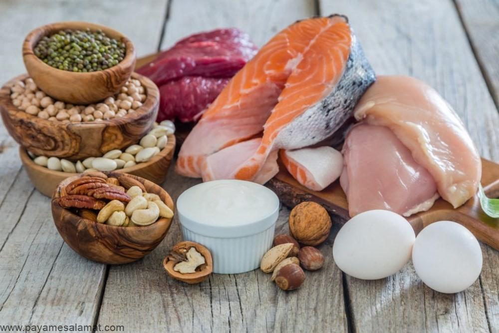 مزایای مصرف پروتئین زیاد برای بدن بر اساس یافته های علمی
