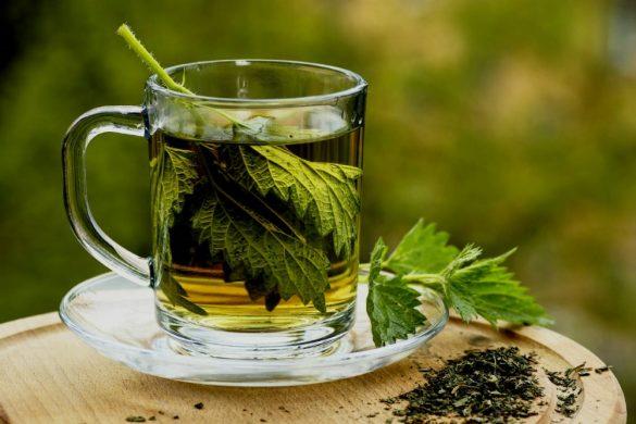 خواص شگفت انگیز چای جعفری