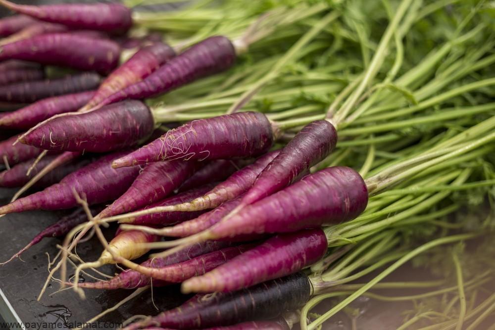 هویج بنفش چیست و ارزش غذایی و فواید آن برای بدن چه می باشد؟