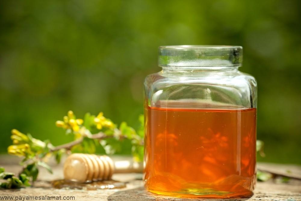 عسل شبدر ؛ منبع تولید، فواید و ارزش غذایی این نوع عسل