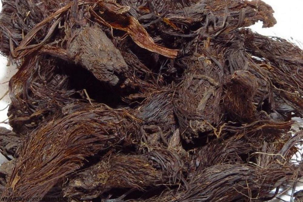 خواص ریشه سنبل الطیب یا همان والرین برای درمان بی خوابی، اضطراب و حتی مشکلات قاعدگی