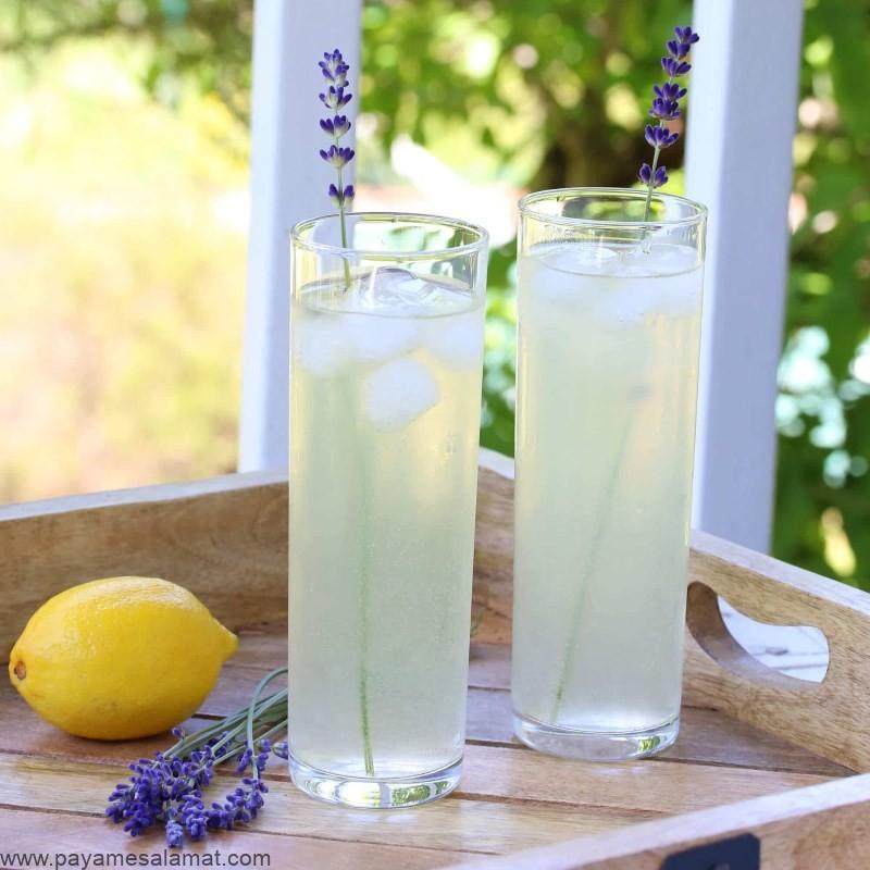 روش تهیه و خواص لیموناد اسطوخودوس