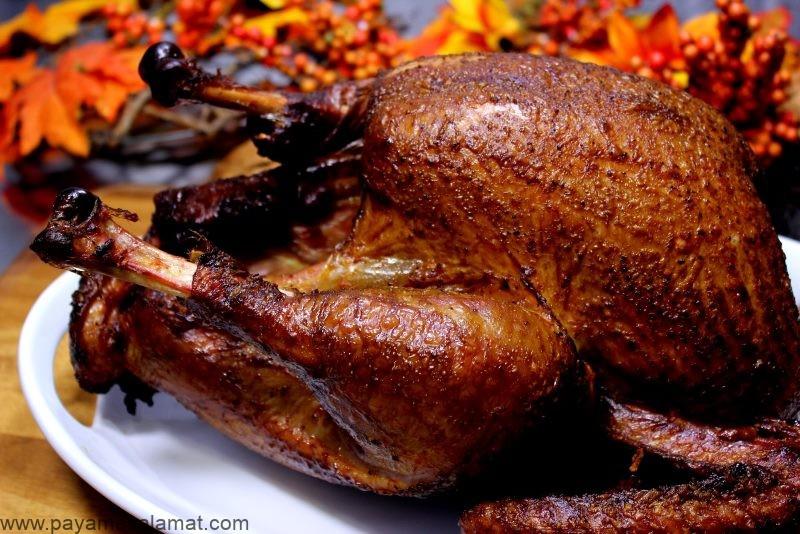 هر آنچه که نیاز است درباره گوشت بوقلمون بدانید