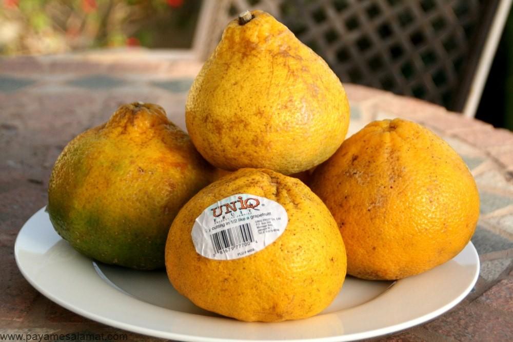 اوگلی ؛ هر آنچه که باید در مورد این میوه بدانید