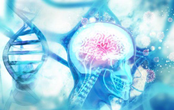 داروهای مرتبط با زوال عقل