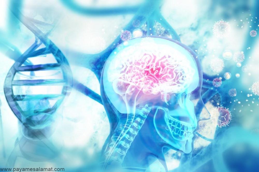 داروهای مرتبط با زوال عقل و کاهش قدرت حافظه