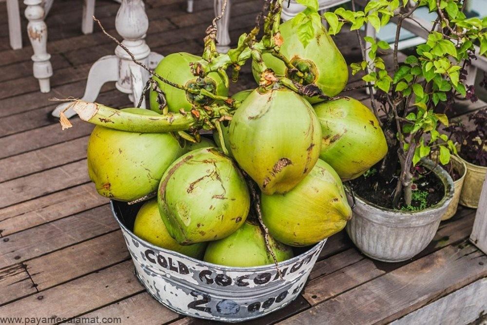 همه آنچه که باید در مورد نارگیل سبز بدانید