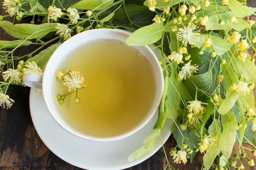 چای لیندن چه خواصی برای بدن ما دارد؟