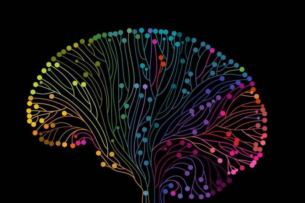 نوراپی نفرین چیست و چگونه می توان این هورمون مهم را در بدن افزایش داد؟
