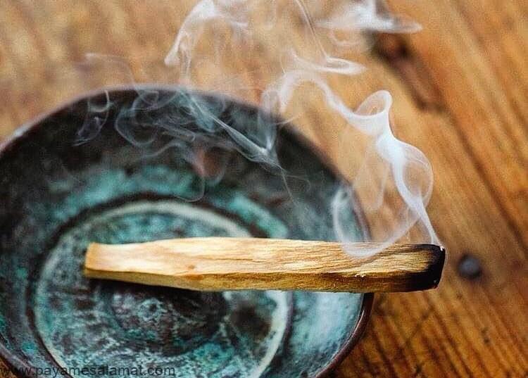 خواص چوب پالو سانتو