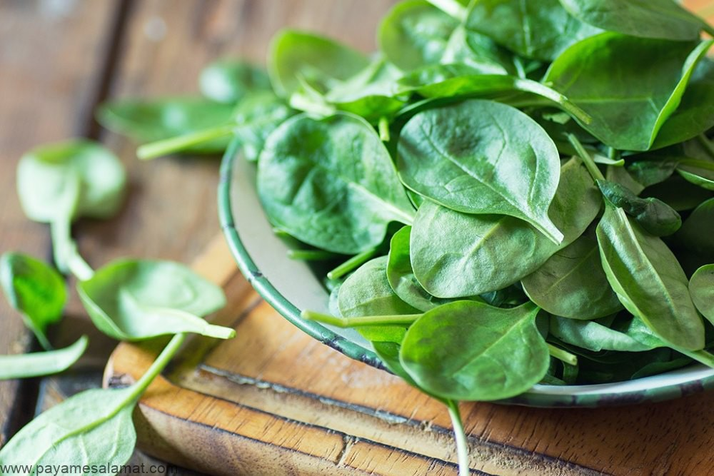 معرفی مهمترین منابع گیاهی آهن که برای گیاهخواران مفید هستند