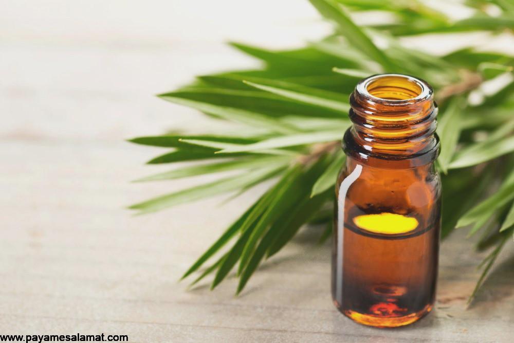 نحوه استفاده از روغن درخت چای برای درمان جوش و آکنه